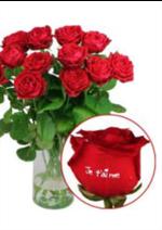 Catalogues et collections Florajet : Les roses marquées