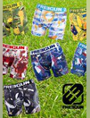 Catalogues & collections Freegun Saint François : Collection aux couleurs du mondial de rugby
