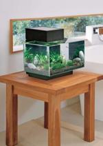 Promos et remises Truffaut : L'aquarium Edge Glossy équipé noir de 23L à 95€ au lieu de 149€