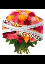 Catalogues et collections Florajet : De 15 à 101 roses à partir de 22€