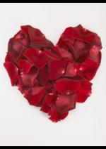 Catalogues et collections Euronics : Joyeuses Saint-Valentin !