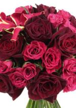 Promos et remises  : Retrouvez le book mariage