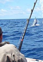 Catalogues et collections Pacific Pêche : Retrouvez la sélection mer