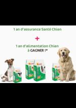 Jeux concours Animalis : 1 an d'assurance et d'alimentation à gagner !