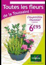 Prospectus Villaverde : Toutes les fleurs de la Toussaint !
