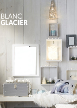 Catalogues et collections BUT : Inspiration : Blanc glacier