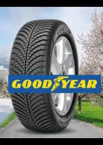 Promos et remises  : 4 pneus achetés Vector 4 seasons = jusqu'à 100€ offerts