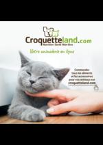 Prospectus Carrefour : Croquetteland.com