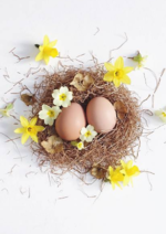 Promos et remises  : Tous les accessoires pour la chasse aux œufs