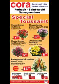 Prospectus Cora LONGEVILLE-LÈS-SAINT-AVOLD : Spécial Toussaint