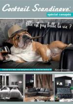 Promos et remises  : Le catalogue spécial canapés