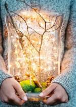 Catalogues et collections Botanic : La nature enchante Noël