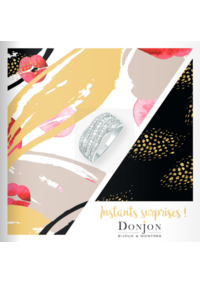 Catalogues et collections Donjon Mont-Saint-Aignan : Instants surprises