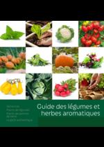 Prospectus AVEVE : Guide des légumes et herbes aromatiques