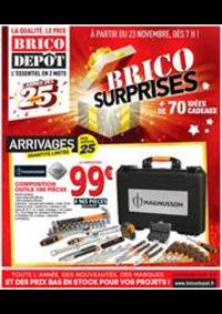 Prospectus Brico Dépôt : Brico Surprises