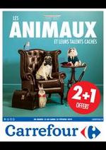 Prospectus Carrefour : Les animaux et leurs talents cachés