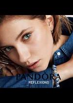 Catalogues et collections PANDORA : Reflexions
