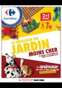 Prospectus Carrefour STAINS : LE MEILLEUR DU JARDIN MOINS CHER