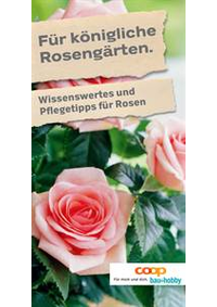 Prospectus Coop Brico+Loisirs Bern : Für königliche Rosengärten