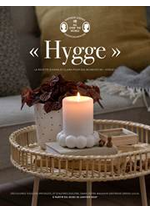 Prospectus  : Hygge