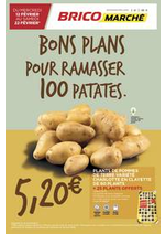 Promos et remises  : Catalogue Bricomarché