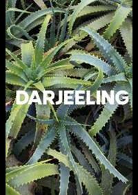 Prospectus Darjeeling AUBERVILLIERS : Tendances Lingerie