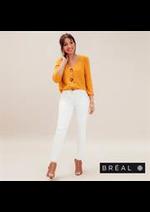 Catalogues et collections Bréal : Collection Chemises