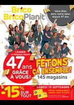 Promos et remises Brico : Fetons