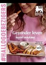 Journaux et magazines Shop'n Go : Folder Delhaize