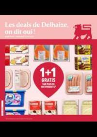 Prospectus Proxy Delhaize Velaine-Sur-Sambre : Folder Delhaize