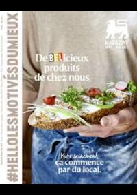 Prospectus Proxy Delhaize Bredene : Folder Delhaize